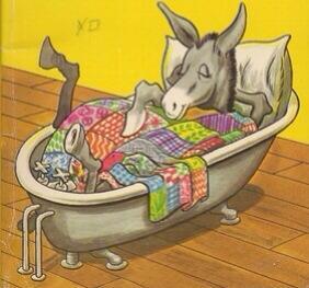donkey arizona